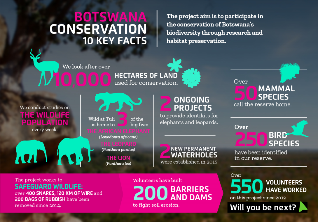 Interesting facts about conservation volunteering in Botswana with projects abroad